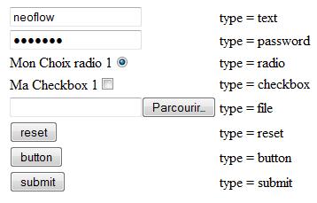 Type d'INPUT HTML