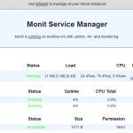 Monit – L'interface web