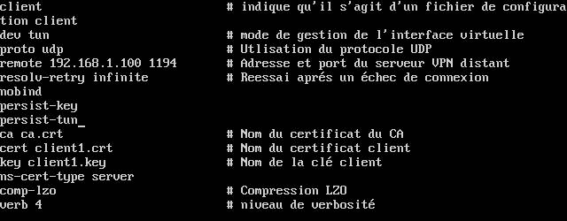OpenVPN05