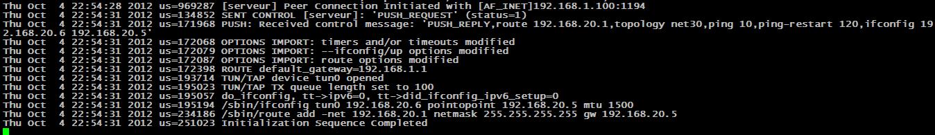 OpenVPN08