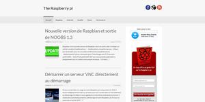 the-raspberry-pi