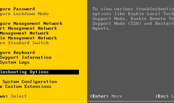 Une vulnérabilité corrigée dans VMware ESX/ESXi