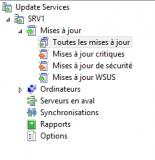 Gestion des mises à jour dans WSUS