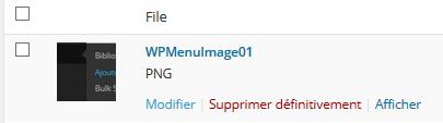WPMenuImage02