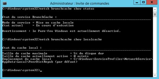 netsh branchcache