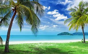 sunny-tropical-beach