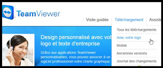 customisation teamviewer