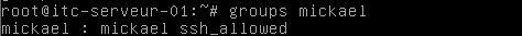 ssh-group-ssh-01