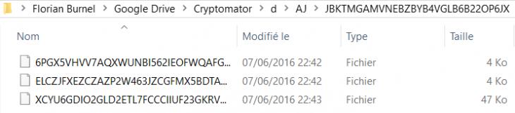 cryptomator6