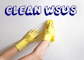 logo-wsus1