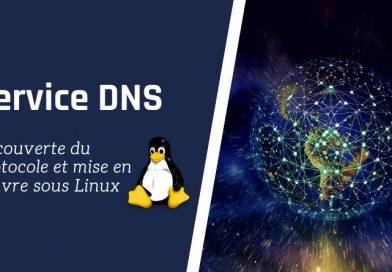 DNS : découverte du protocole et mise en oeuvre sous Linux
