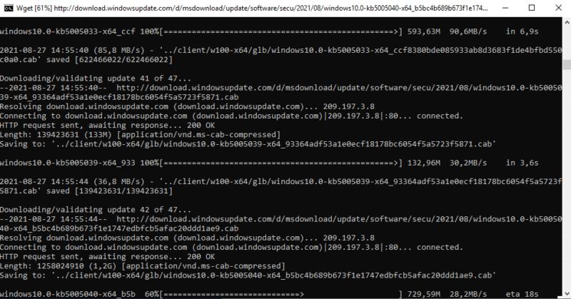 Téléchargement des mises à jour avec WSUS Offline Update